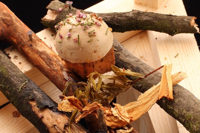 """ブロツワフの""""Food Think Tank""""でのプロジェクトのひとつ「森」をテーマにしたセッティング。photo by Tomasz Marcin Hartman"""